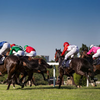 Race fixing and money laundering: How the horse racing industry fights back against criminal cartels