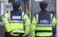Poll: Do you think gardaí should wear body cameras?