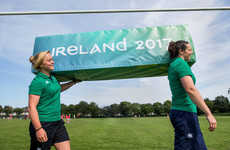 WRWC to run ticket exchange, so don't give up hope of seeing Ireland's pool matches just yet