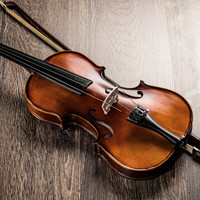 Japanese woman arrested on suspicion of destroying ex-partner's 54 violins worth nearly €1 million