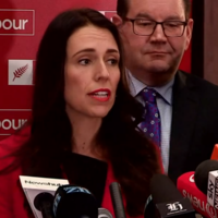 Sexism row in New Zealand after party leader is told public has right to know her parenthood plans