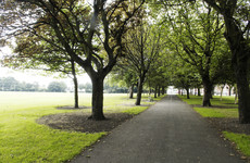 Locals demand that Dublin City Council save 109-year-old Fairview trees