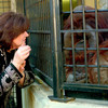 Orangutan who learned to communicate in sign language dies aged 39