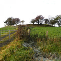 Is This A Fairy Fort Or Just A Regular Irish Hill?