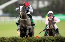 Unaccompanied to skip Cheltenham Champion Hurdle