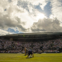 Play on, player: Wimbledon will spend £71 million on a second roof