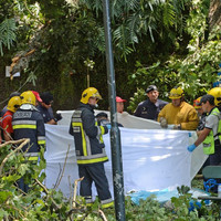 Three days of mourning in Madeira after falling tree kills 13 people