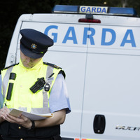 Two arrests after MDMA and cannabis worth €800k seized at Navan Road apartment