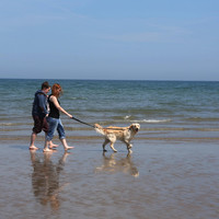 Swimming ban extended at Loughshinny due to 'unacceptable levels of contamination'