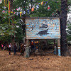 13 things we learned from a sneak peek at this year's Electric Picnic
