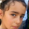 Frantic search for nine-year-old girl who vanished from French wedding
