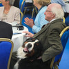 Just 12 photos of Michael D with his dogs Bród and Shadow