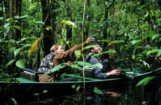 Plans to allow mining in the Amazon rainforest have been halted