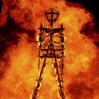 Man dies after running into Burning Man festival flames