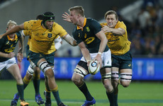 Springboks recover to claim thrilling draw with Australia