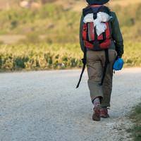 Irish pilgrim (79) dies in Italy