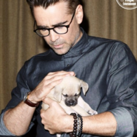 Celebrities including Colin Farrell and Barry Keoghan met a load of adorable puppies at TIFF