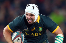 Northampton sign Springbok flanker Brussow to fill Picamoles void