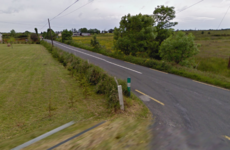 Man in his 20s dies in Roscommon crash
