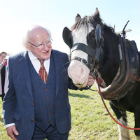 President Higgins is not 'ruling anything out' when it comes to running for a second term