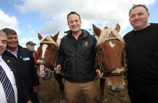 Tánaiste asked about boost to Garda Commissioner's salary as Leo tries out his ploughing skills