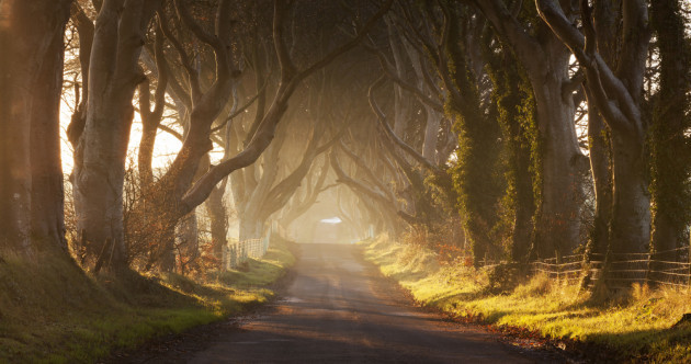 6 stunningly beautiful drives to see Ireland in the autumn