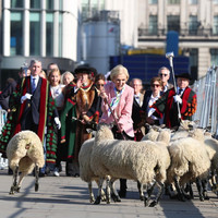 Mary Berry was spotted leading sheep across London Bridge and people were confused