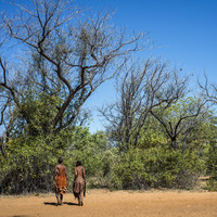 Wildlife groups accused of abuses against tribes 'in the name of conservation'