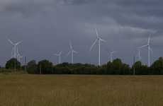 A court has slapped down planners for letting 'irrelevant' details stop a Kildare wind farm