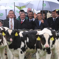 After project China, Bord Bia is hunting for the next billion-euro Asian market