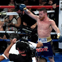 WBC have ordered a Gennady Golovkin-Canelo Alvarez rematch