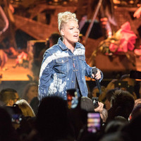 Pink has shared her opinions about Dr. Luke following Kesha's legal battle with the producer