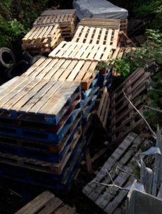 People asked to report stockpiling of bonfire materials ahead of Halloween