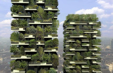 A jungle high above the city streets - living in Milan's elite 'Vertical Forest'