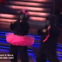 Bristol Palin's gorilla jive fails to impress (video)