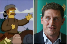 Eamon Ryan used a Simpsons reference in the Dáil yesterday