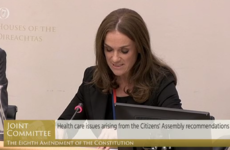 Dr Rhona Mahony tells Eighth Committee: 'We must address the criminalisation of medical care'