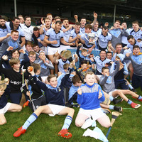 Breen fires 0-6 from play as Na Piarsaigh wrestle back Limerick hurling title