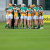 Offaly's hurlers have found their new manager