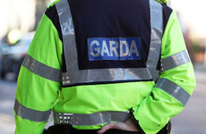 Man killed in Tipperary by falling tree limb