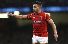 Toulon-bound Rhys Webb out in the cold as Wales scrap 'Gatland's Law'