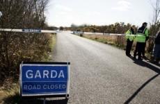 Man dies in Clare crash