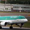 Aer Lingus flight returns to Dublin after 'significant damage' to runway lights discovered