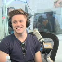 Ryan Seacrest told Niall Horan he's a third Irish and a lot of cringing ensued