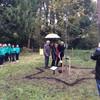 Holocaust survivor plants Irish oak tree at Russborough House