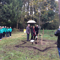 Holocaust survivor plants Irish oak tree at Russborough House