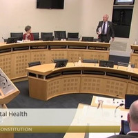Mattie McGrath storms out of 'biased' Eighth Amendment Committee