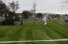 Victim of fatal north Dublin shooting named