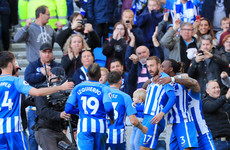 In-form Murray scores third goal in two games to earn Brighton point