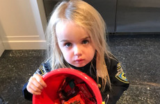 Donald Trump Jr is getting torn to shreds for a tweet comparing his daughter's trick or treating to socialism